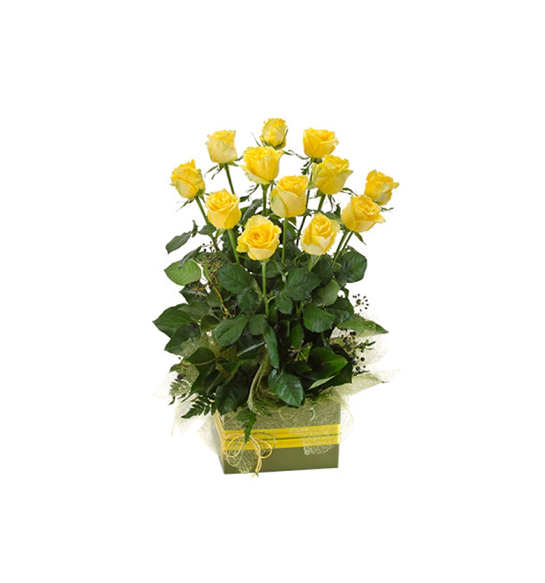 Now & Forever  Box - Arrangement of 12 Long Stemmed Yellow Roses - image now-forever on http://tranquilblooms.com.au