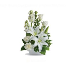 Dazzling - image white-simplicity-7-300x300 on http://tranquilblooms.com.au