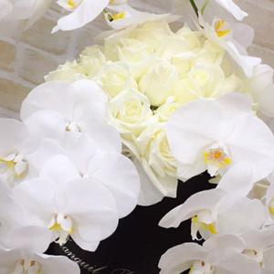 BLACK VELVET Rose box - image FullSizeRender_1-300x300 on http://tranquilblooms.com.au