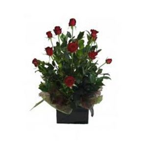 10 roses and oriental lilies - All rose colours available - image 12roses-posy-box-300x300 on https://tranquilblooms.com.au