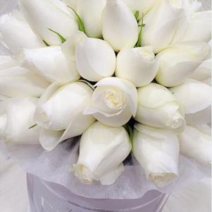 Red Roses White Box - image FullSizeRender_2-300x300 on https://tranquilblooms.com.au