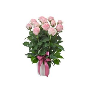 tranquil blooms Impulse - Arrangement of 12 / 24 Pink Roses in a Ceramic Pot