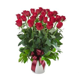 tranquil blooms Impulse - Arrangement of 12 / 24 Red Roses in a Ceramic Pot