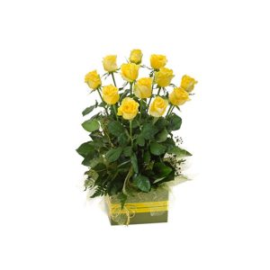 tranquil blooms Now & Forever Box - Arrangement of 12 Long Stemmed Yellow Roses