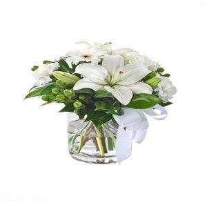 tranquil blooms Celine