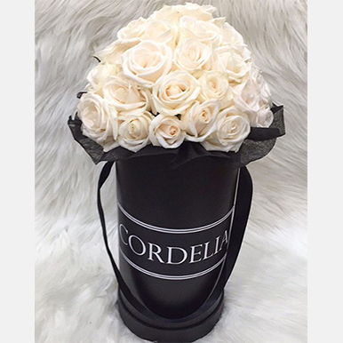 Berry Delight Bright - Mixed Arrangement in a Ceramic Pot - image Champagne-Roses-Black-Box-img on https://tranquilblooms.com.au